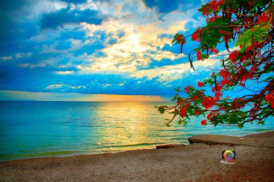 0531_Beach_1087